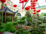 Bellagio: Chinese New Year (6)