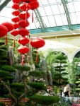Bellagio: Chinese New Year (7)