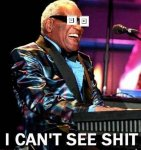 Ray Charles: I Can't See Shit!