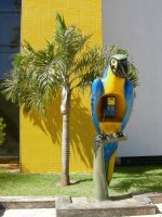 Ring ring ring ring ring ring -- MACAW PHONE!  Outside the 3 Americas Mall.