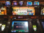 Dam Lumberjack Beavers slot machine