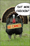 Thanksgiving 'Canes: Eat Mor Chickin
