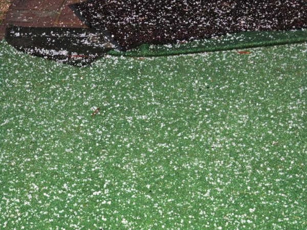 pea-sized hail in Newton