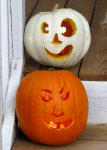 our pumpkins in daylight -- white == Cynthia, orange == Ben