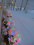 Christmas lights under the snow