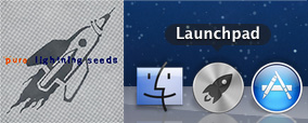 "Lightning Seeds ""Pure"" album cover + Apple Launchpad icon."