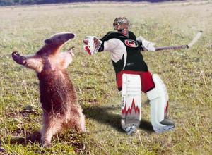Puck You! Cam Ward is an ANTEATER!