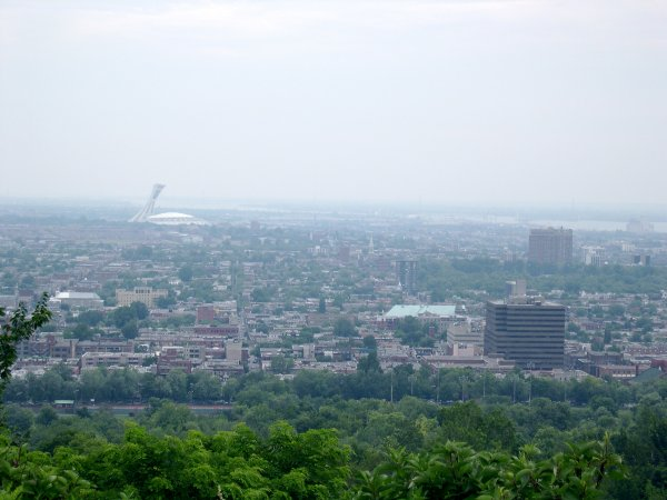 A view of Montreal from the hill.