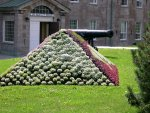 The Citadel - Interesting flower arrangement, shaped like cannon balls.